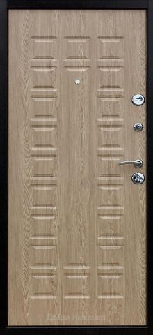 Порошковая дверь DR229