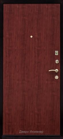 Дверь с ковкой DR259