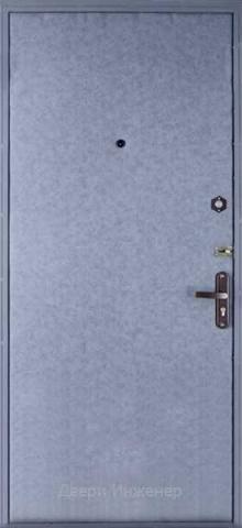 Дверь с ковкой DR254