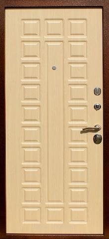 Порошковая дверь DR225
